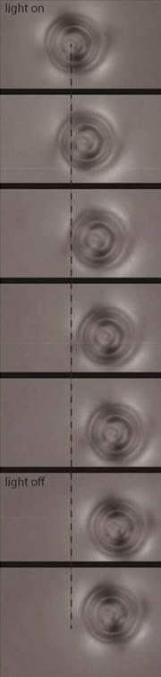 Moving microbeads in liquid crystals