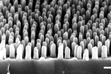 nanostructured surfaces with perfect transmittance fig1e